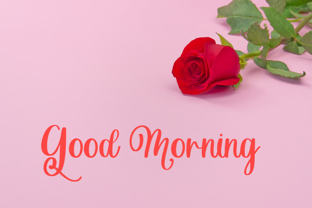 beautiful good morning images pictures free hd 1
