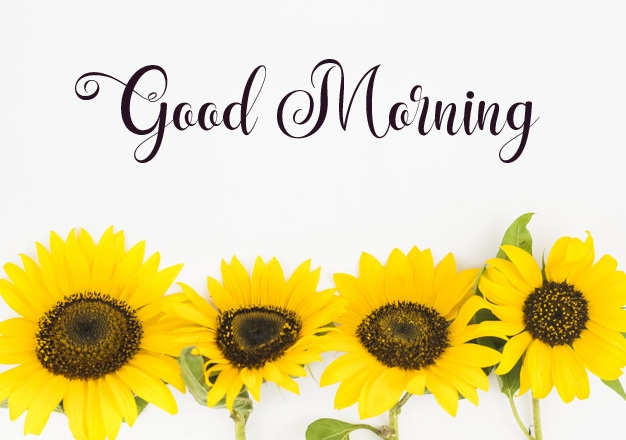 beautiful good morning images wallpaper for facebook