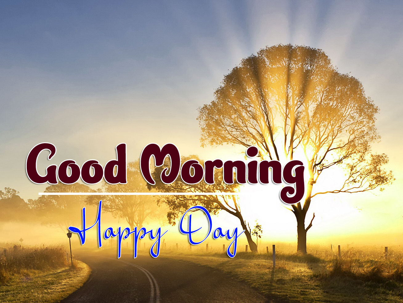 beautiful good morning images wallpaper hd download