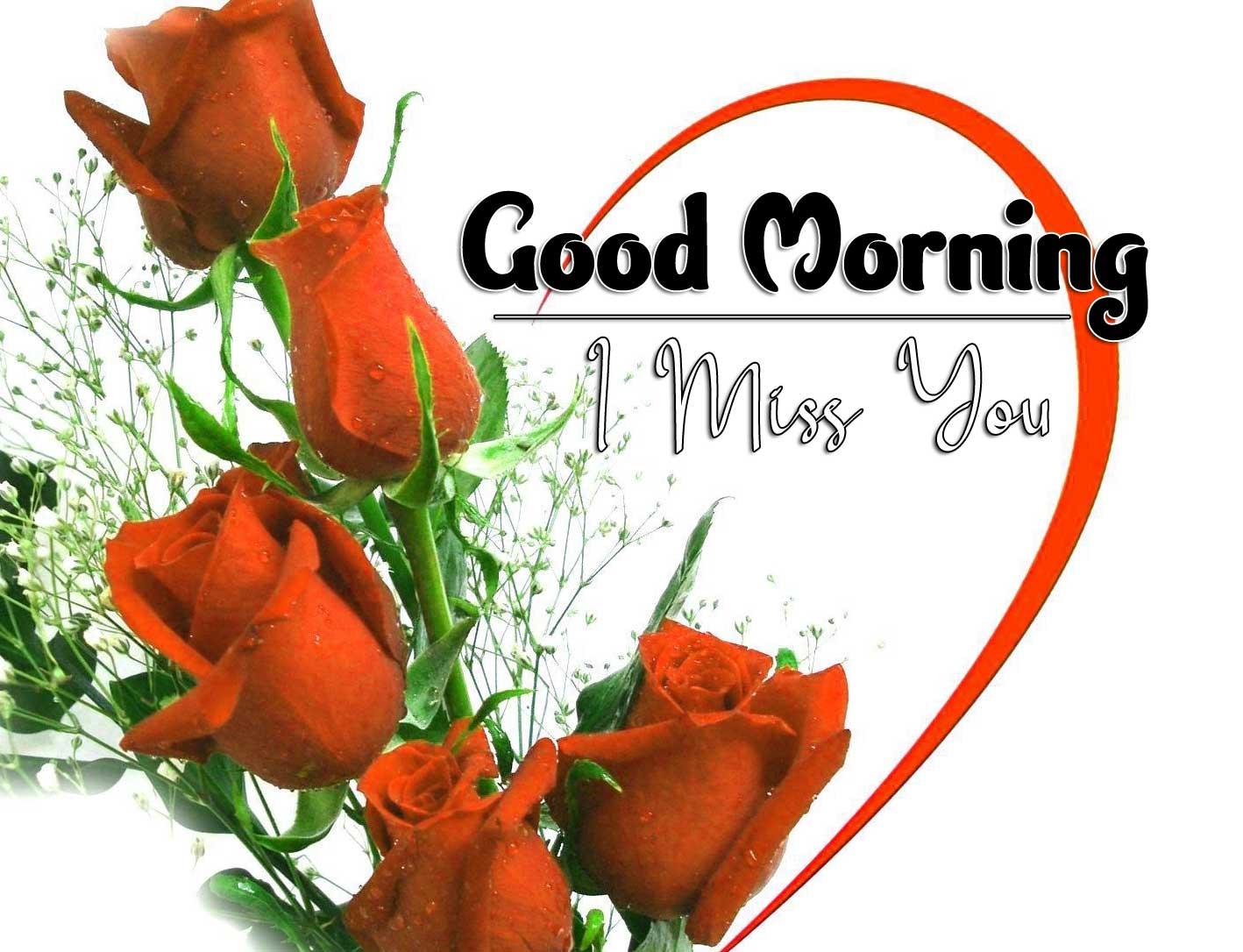 beautiful rose good morning images photo download
