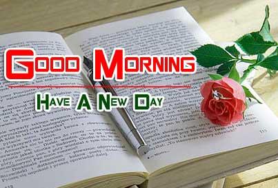 beautiful rose good morning images pics photo download