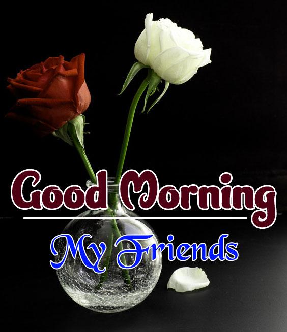 best rose good morning images wallpaper free hd