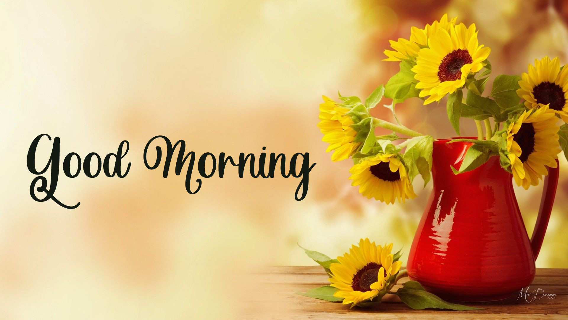 flower good morning images photo hd 1