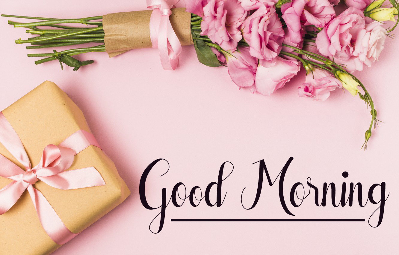 flower good morning images photo hd download 1