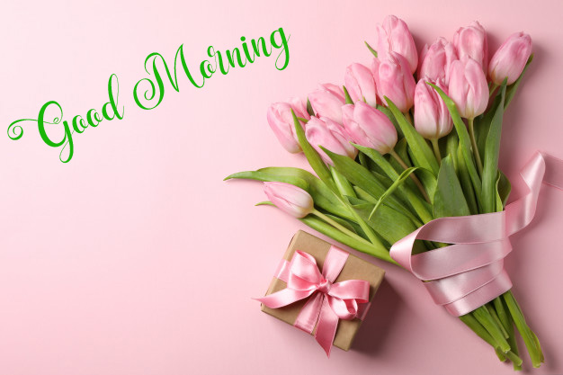flower good morning images wallpaper for whatsapp