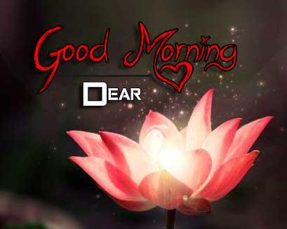 flower good morning images wallpaper hd