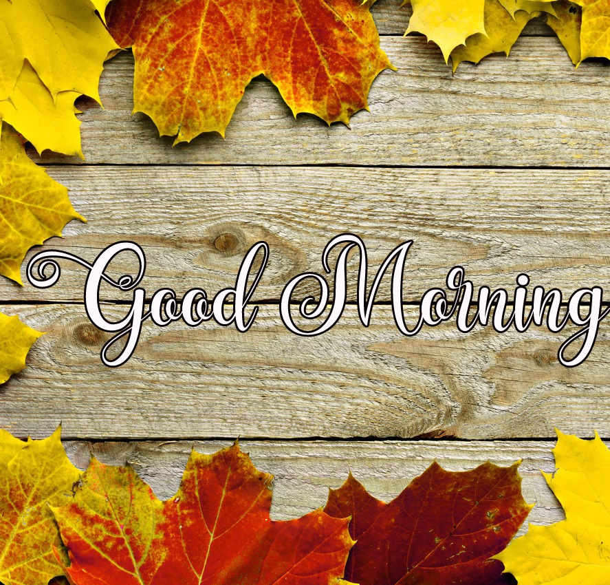 good morning images photo for download 1