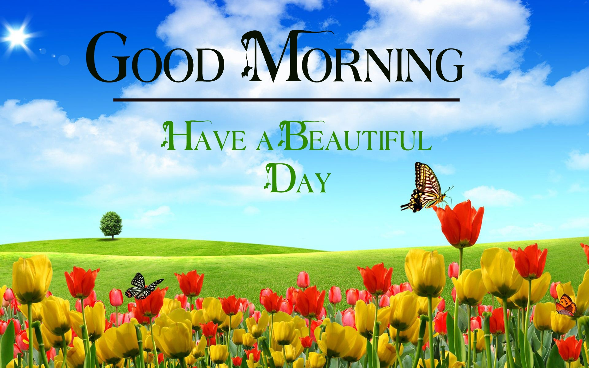 good morning images photo hd 2