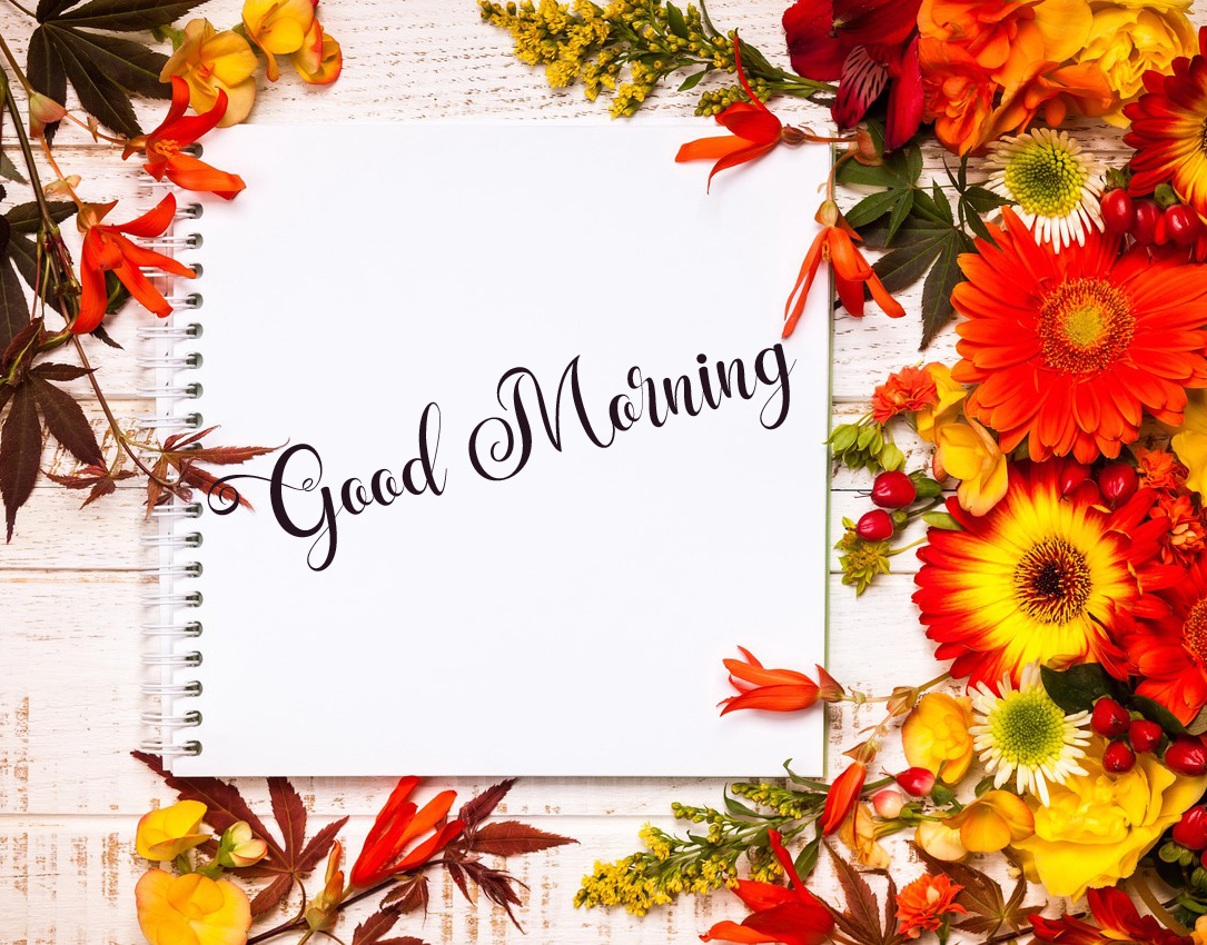 good morning images pics photo for hd