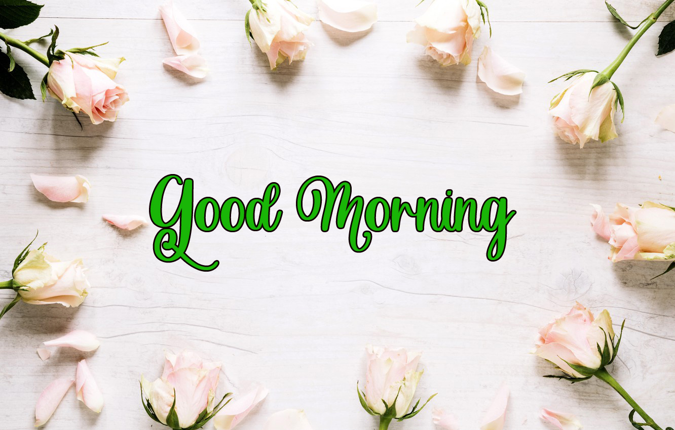 latest flower good morning images photo download