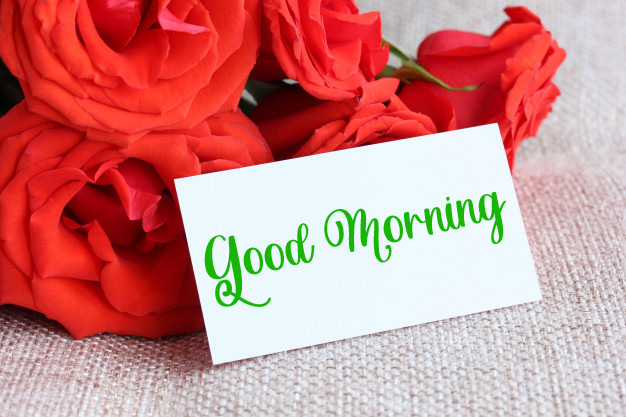 latest flower good morning images photo hd