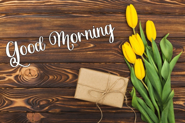 latest flower good morning images pics free download