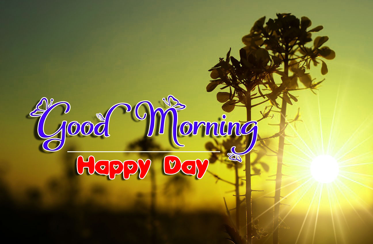 latest good morning images photo free download