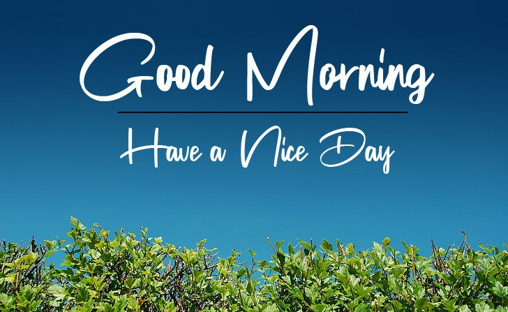 latest good morning images photo free hd download