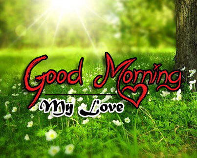 latest good morning images pics for download