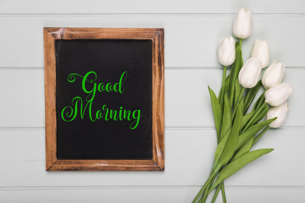 new flower good morning images photo hd