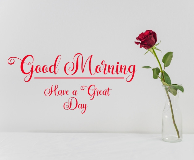new flower good morning images pics download
