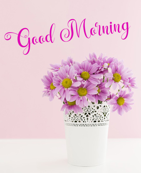 new flower good morning images pictures hd