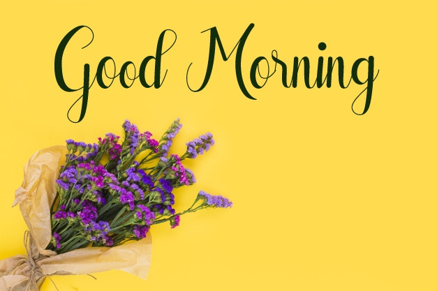 nice flower good morning images photo download 1
