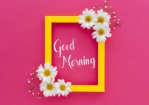 nice flower good morning images pictures for download
