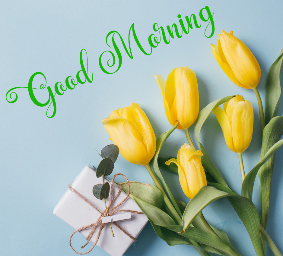 nice good morning images photo for facebook 1