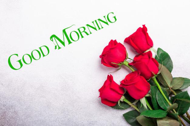 nice good morning images photo free download 1