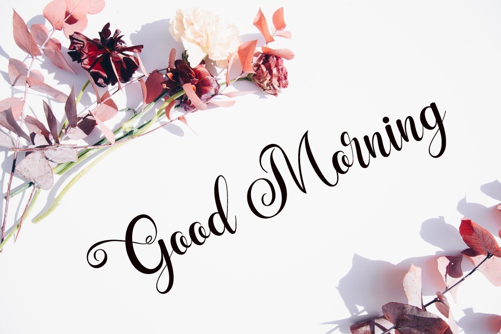 nice good morning images photo hd 1