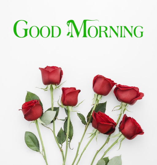 nice good morning images photo hd download 1