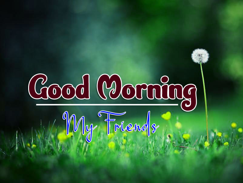 nice good morning images pics for download