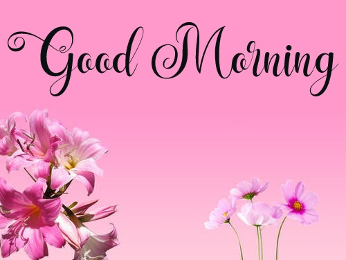 nice good morning images pictures hd 1