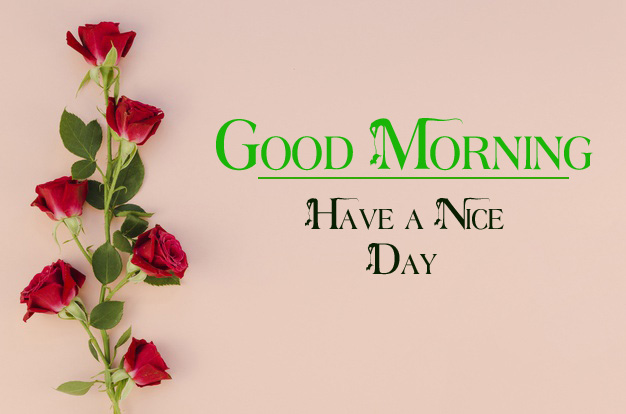 nice good morning images pictures hd download 1