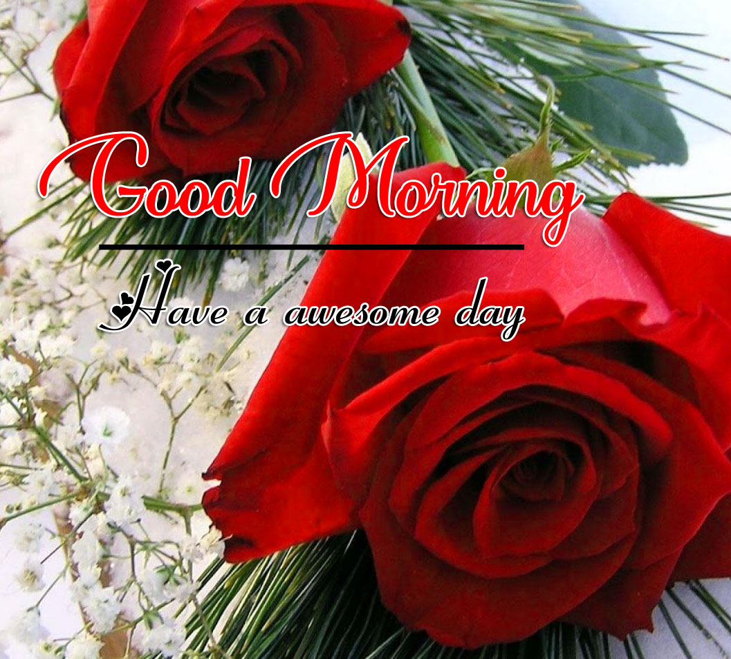 Beautiful Good Morning Images Photo