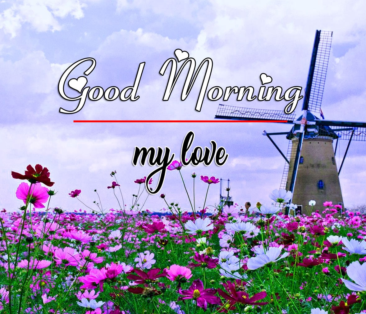 Best Good Morning Images Wallpape