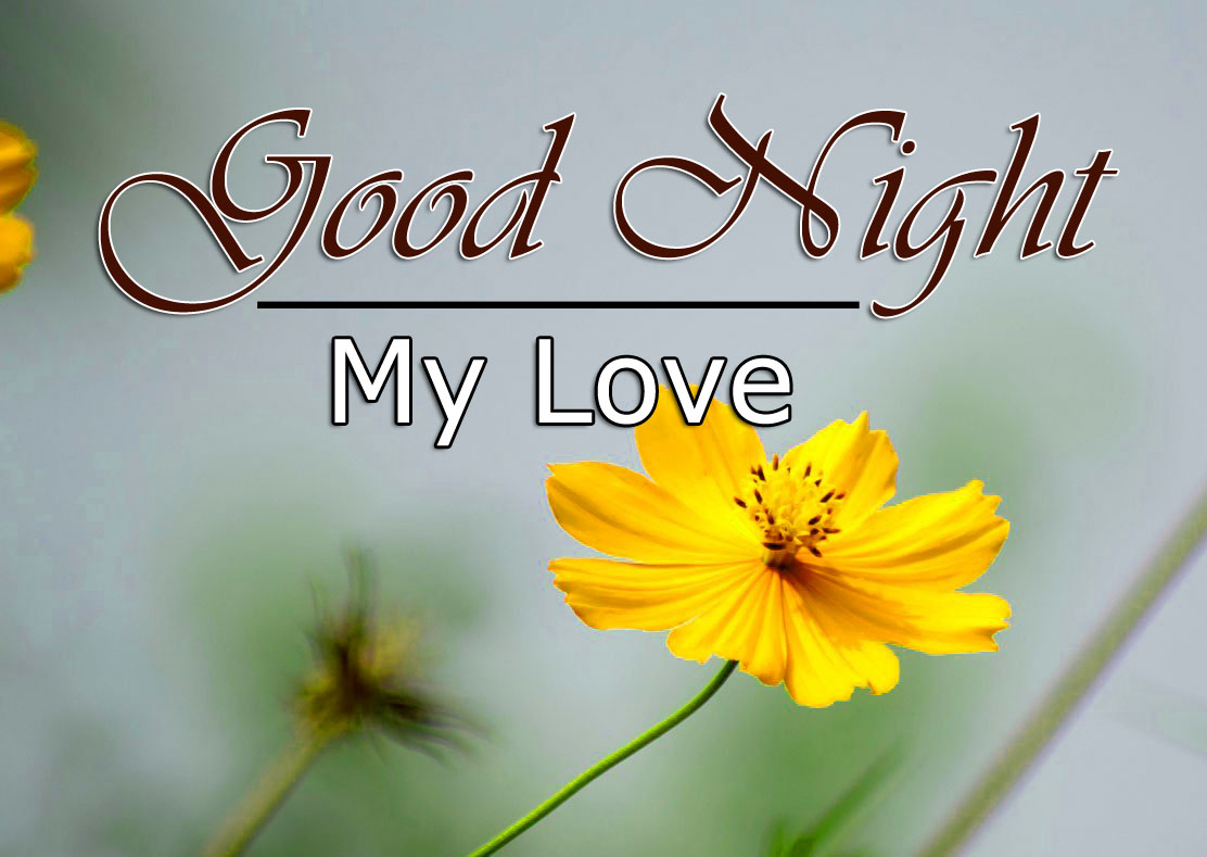 Free Good Night Images Photo