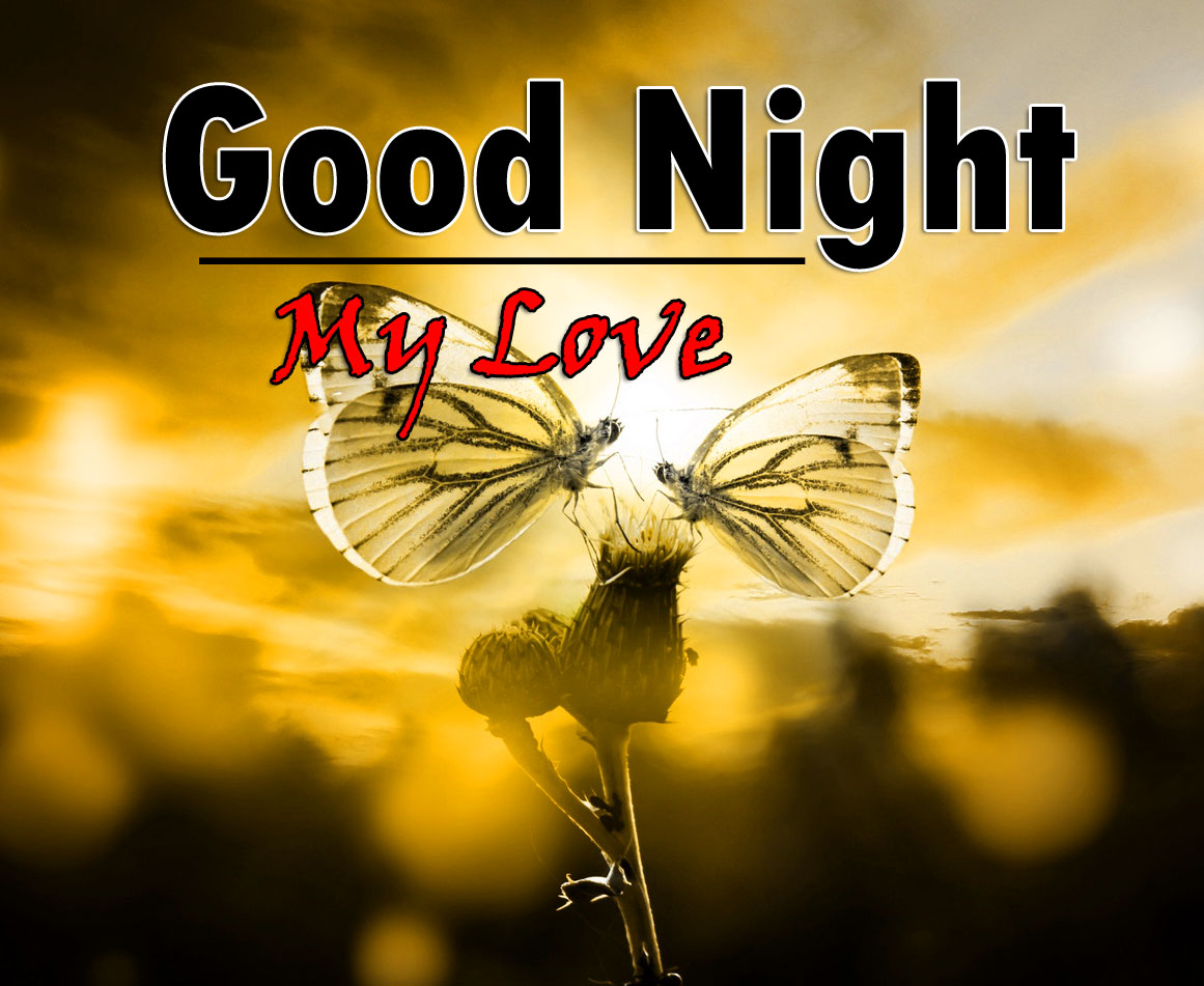Free Good Night