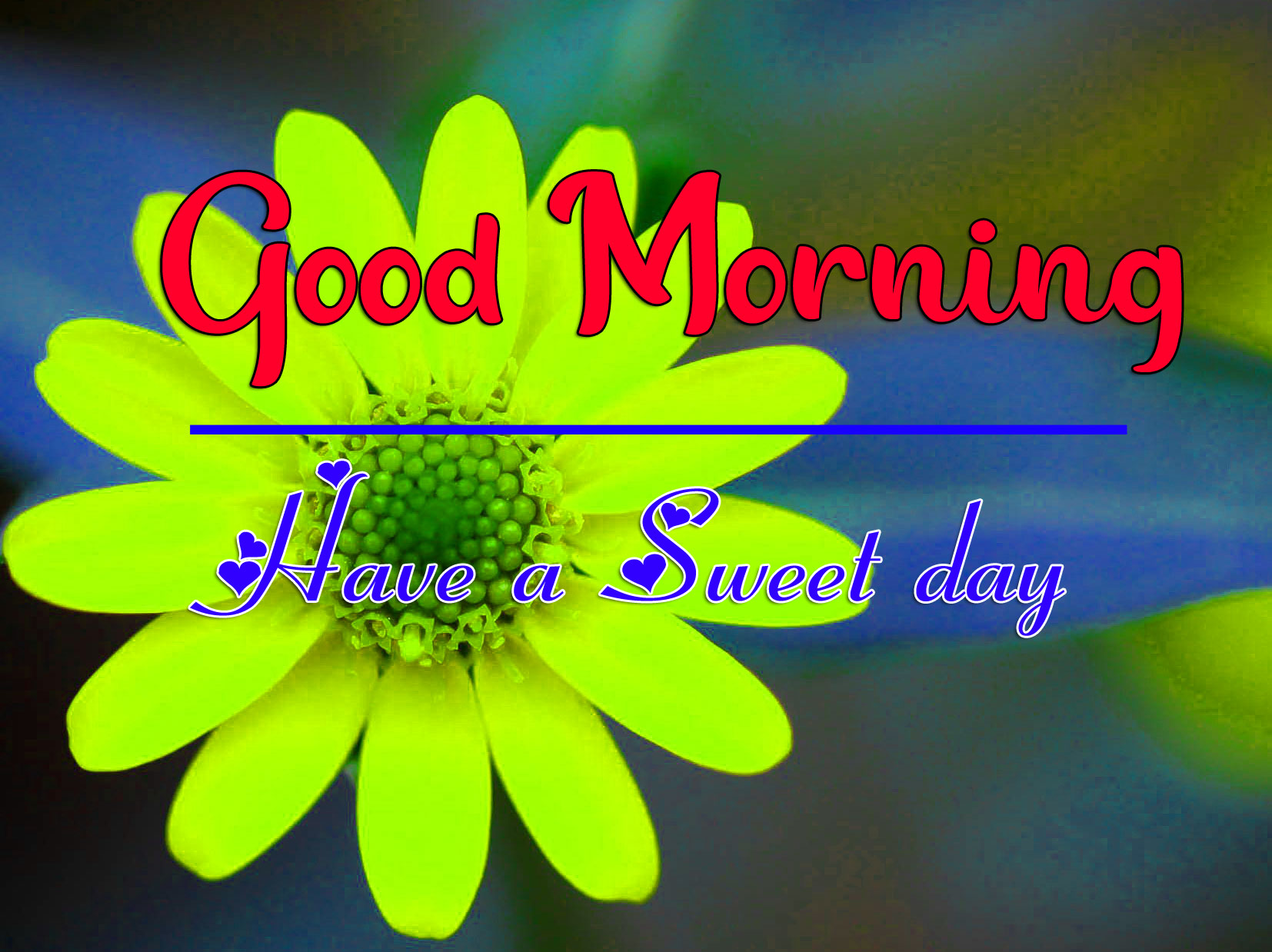 Good Morning Photo Wallpaper