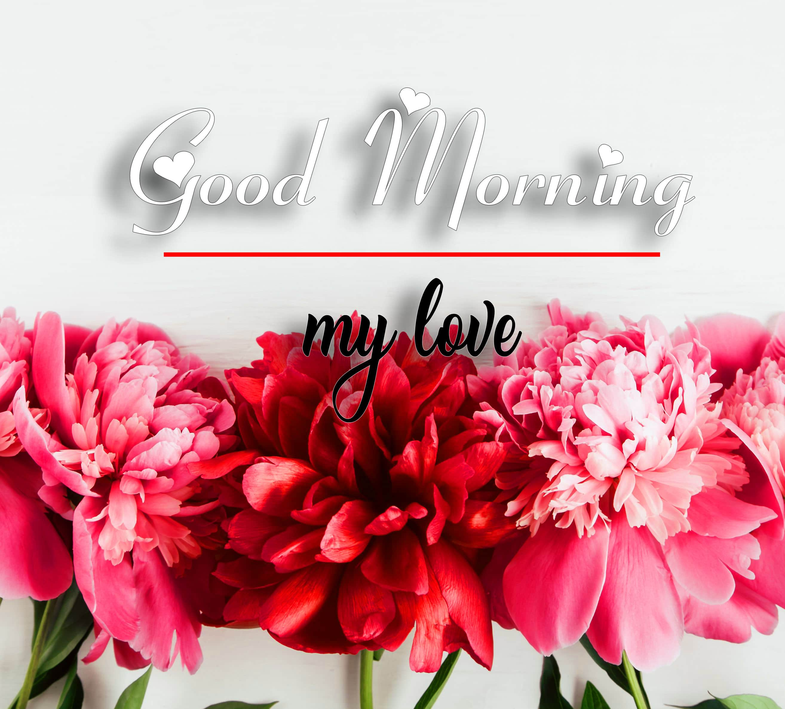 Good Morning Wallpaper Images 1