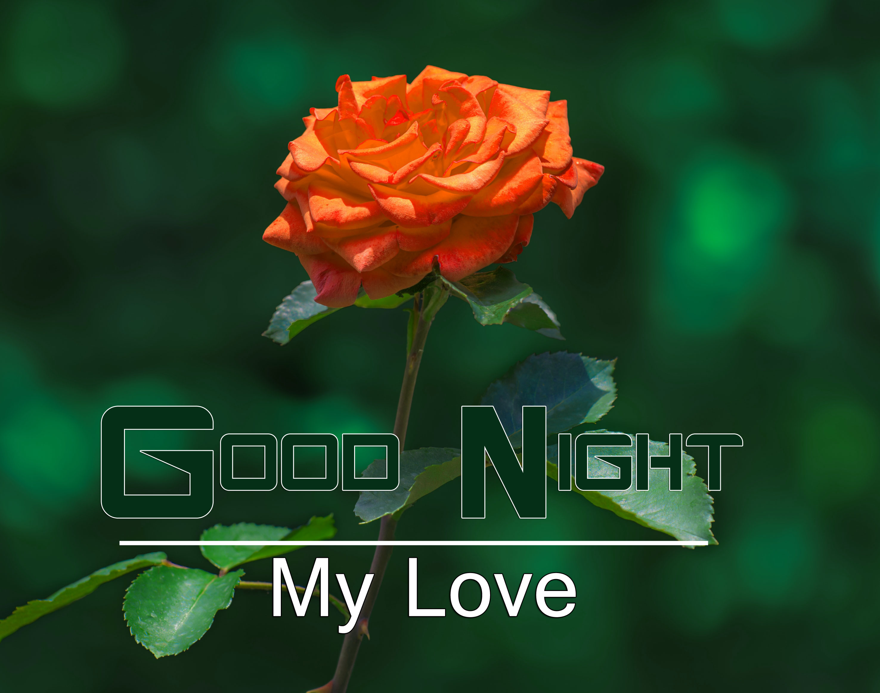 Good Night Images Download 1