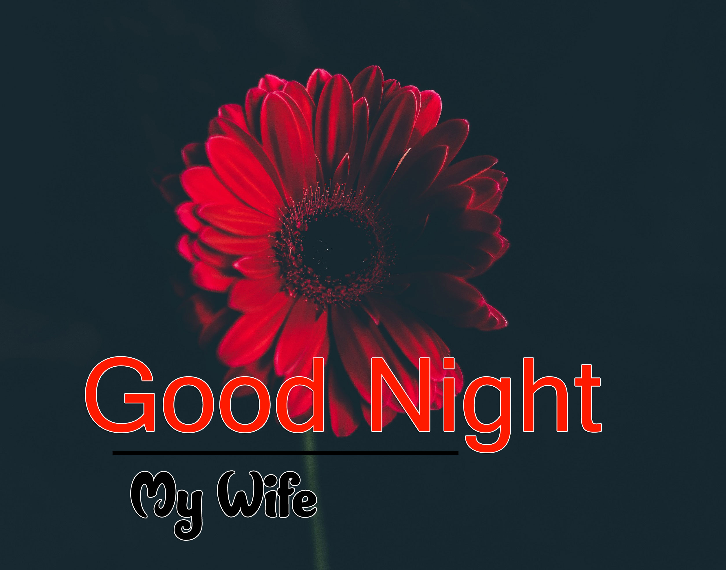 Good Night Images For Whatsapp 1