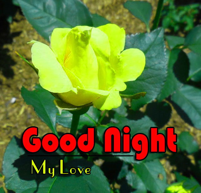 Good Night Images Wallpaper 2