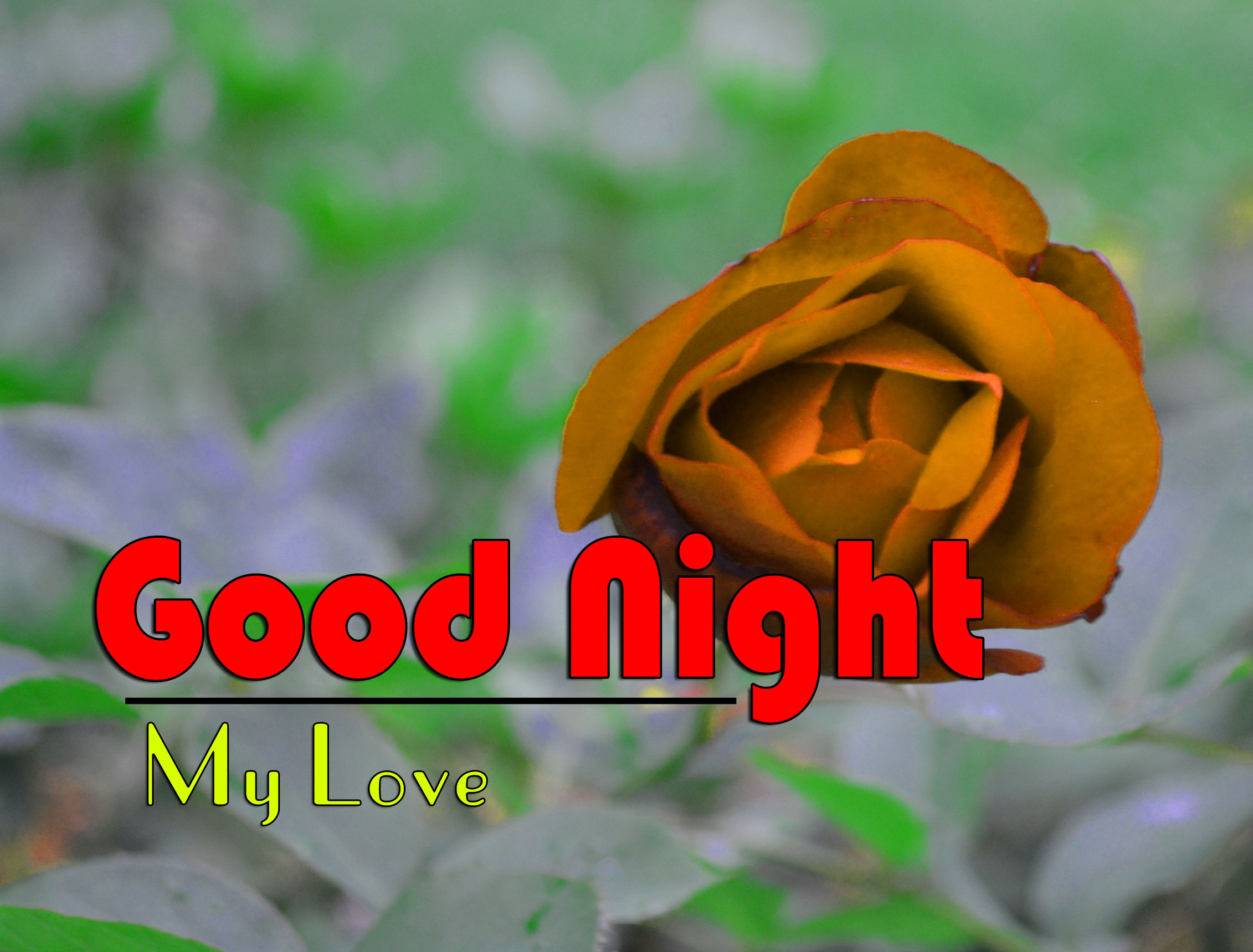 Good Night Pictures For Whatsapp 1