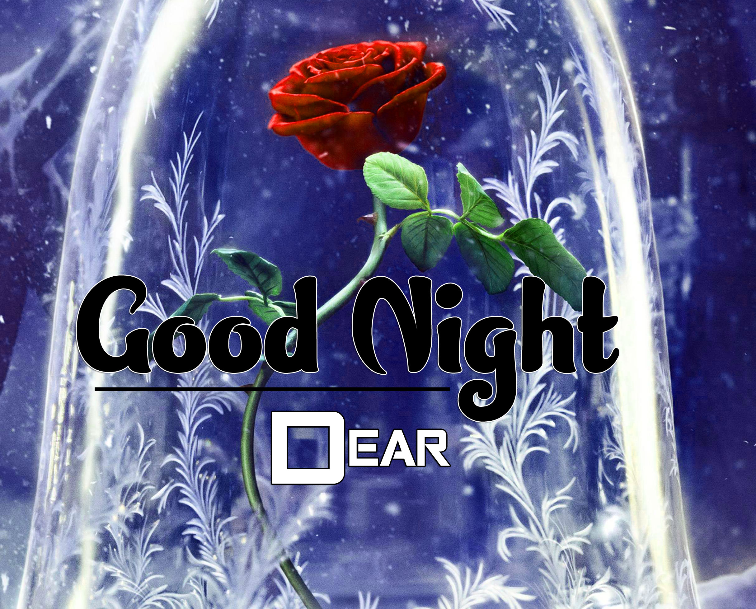 Latest Good Night Photo Pics