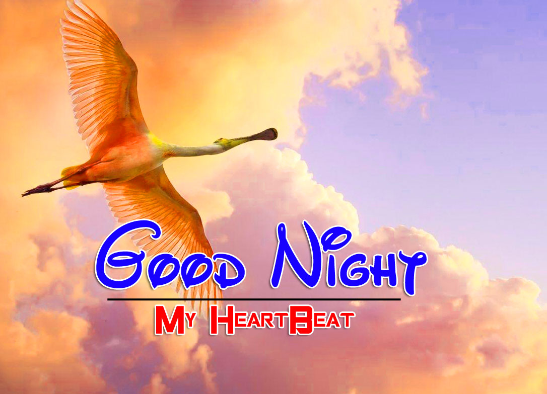 Latest Good Night Pictures Images