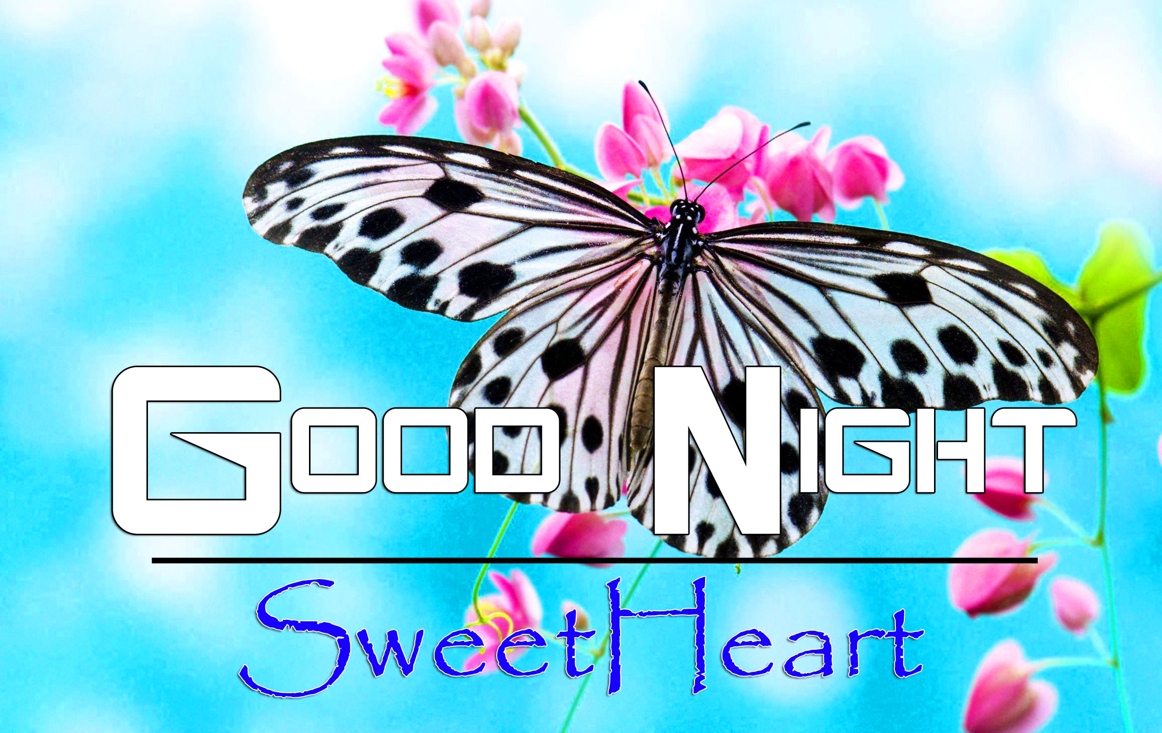Latest Good Night Wallpaper Images 1