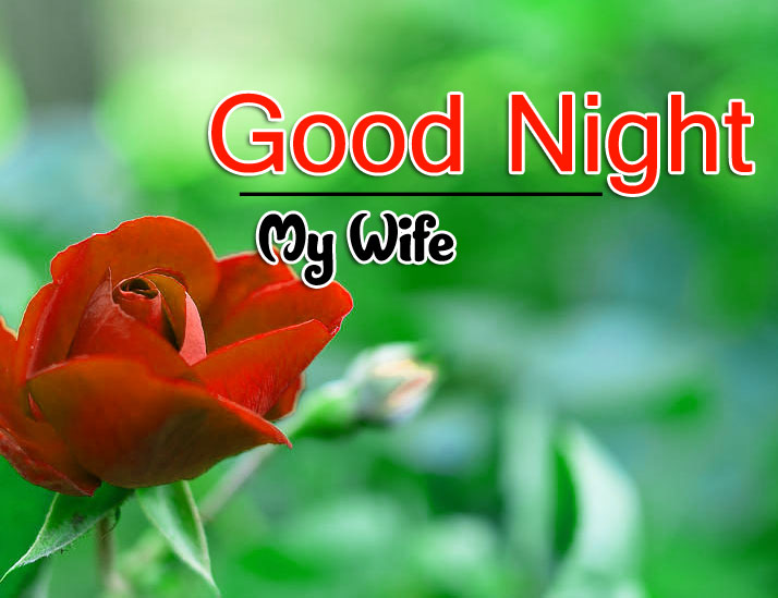 Latest Good Night Wallpaper Pics