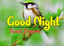 New Good Night Download Images 1