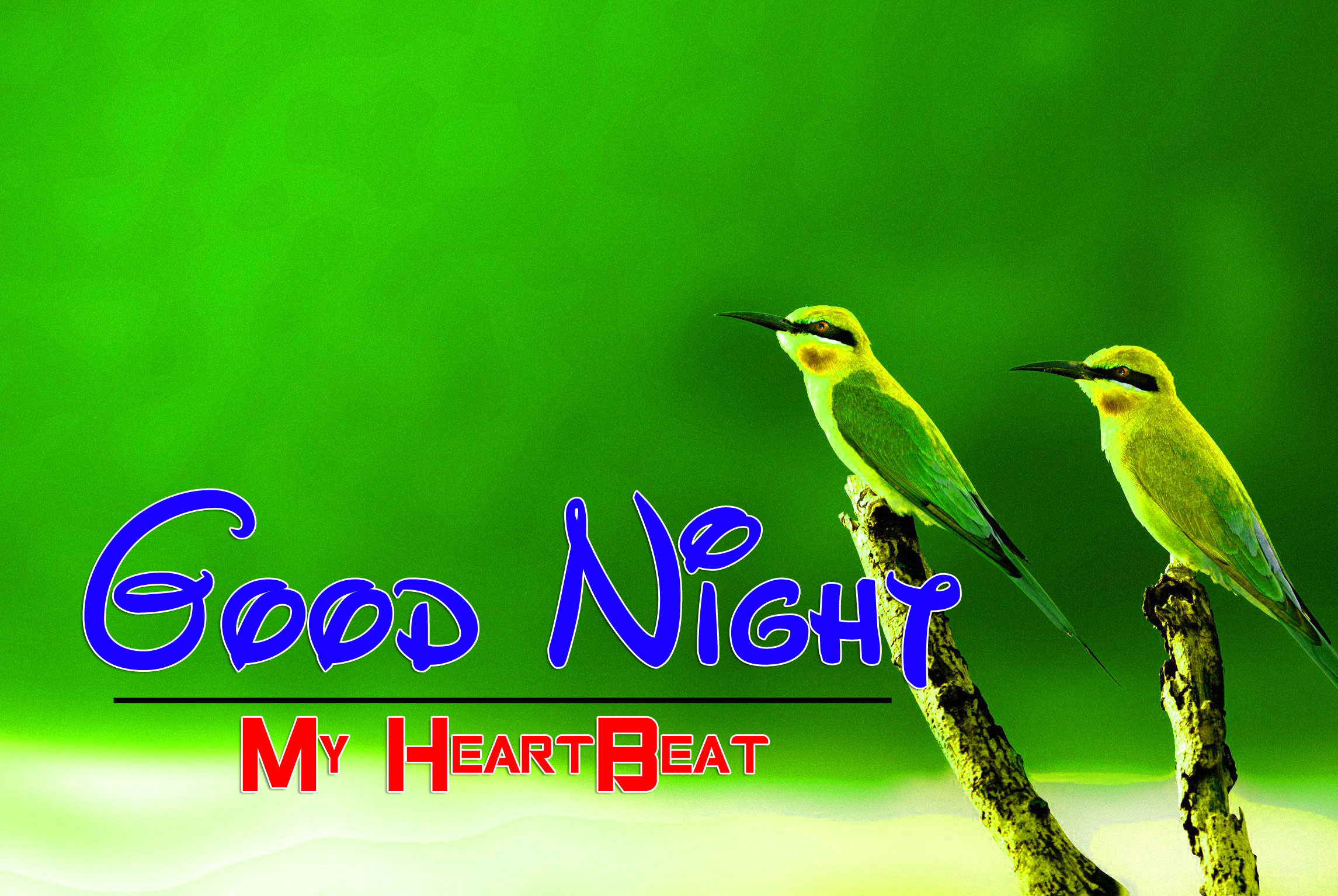 New Good Night Images Wallpaper 2
