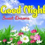 New Good Night Pics Downlkoad