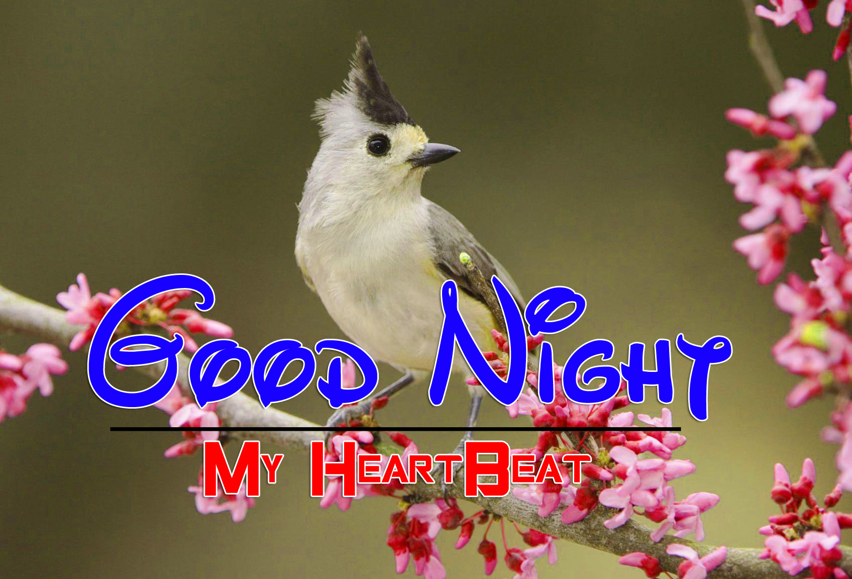 New Good Night Wallpaper Images 1
