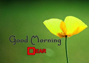 3Best Good Morning Images Hd